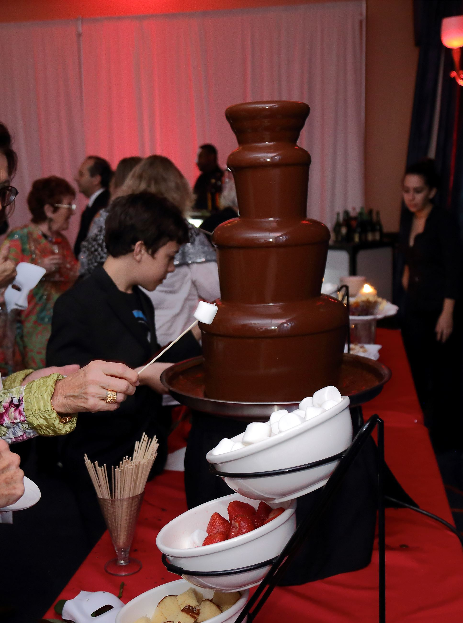 Chocolate Fountain  (3)